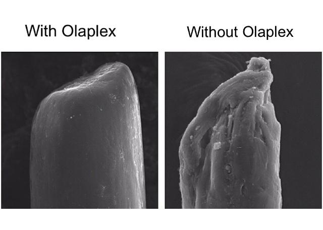 All About Olaplex